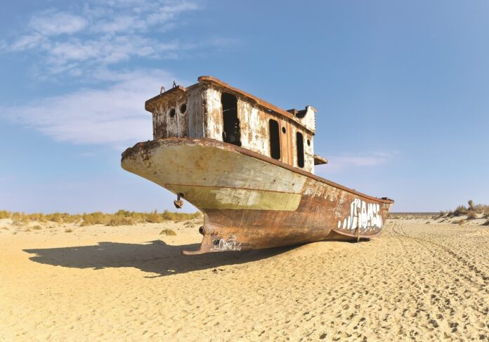 The Aral desert © iStock / alsem